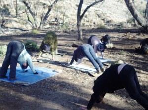 Operation Flinders - Yoga in the morning